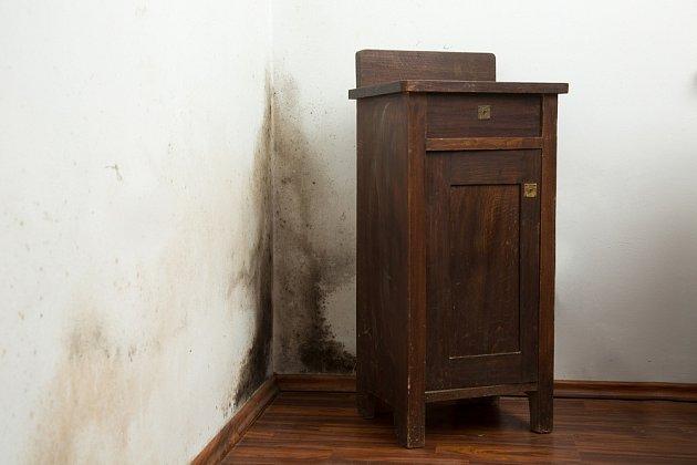 Pokud stojí nábytek příliš blízko vlhnoucí stěny, může se objevit plíseň i na něm.