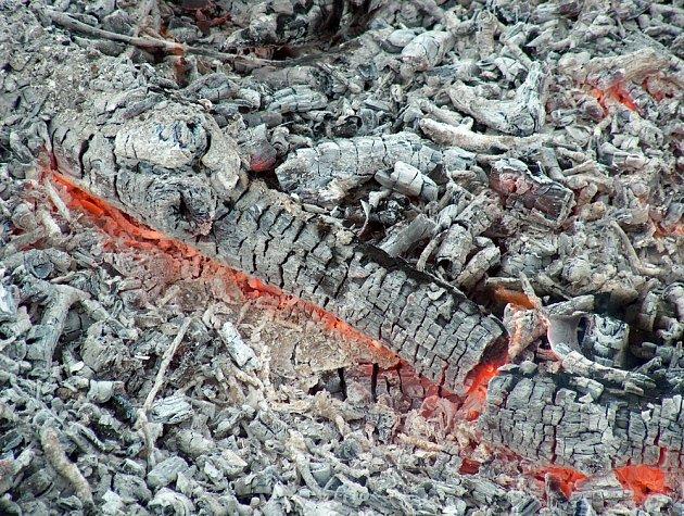 Hnojivo z kvasinek vytahuje z půdy draslík, doplňte ho dřevěným popelem.
