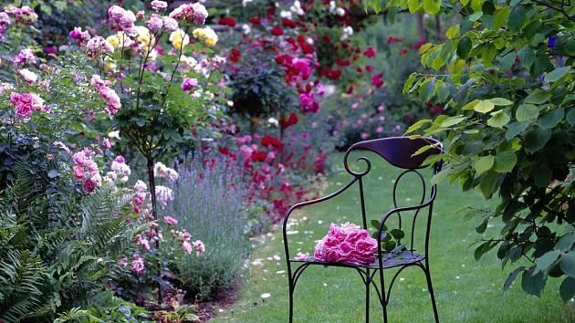 Žádná jiná nevytvoří romantické zákoutí tak, jako růže