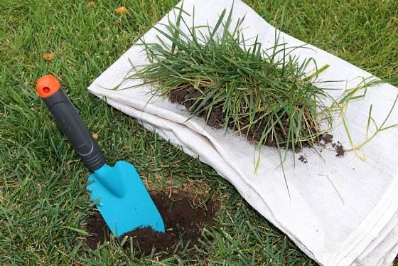 Tam, kde trávník prorůstá do záhonů, vyryjte drn a použijte jej na opravu holého místa.