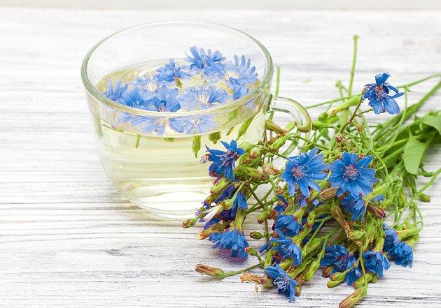 Nálev z květů čekanky hojí oční záněty
