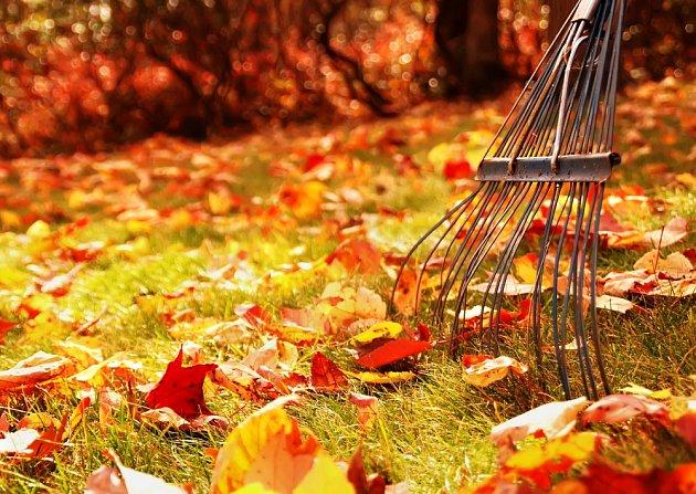 Hrabání listí je velmi důležité.