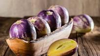 Plody pepína jsou šťavnaté a sladké