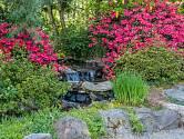Pro umělý potok v zahradě je třeba vybrat vhodné místo.