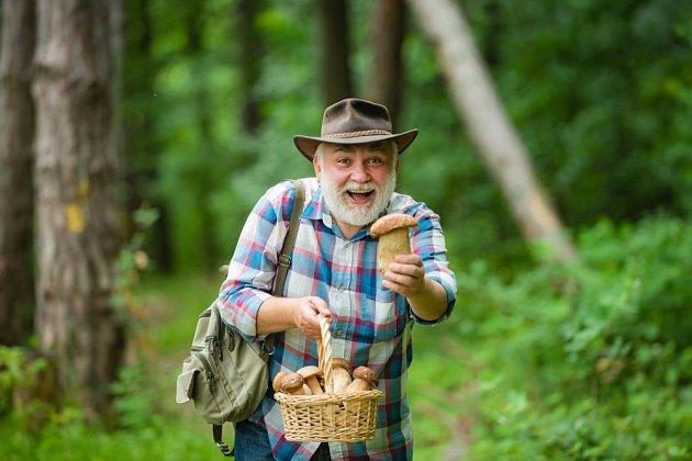Proč máme houbaření tak rádi?