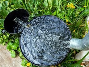 Sudy na dešťovku jsou často líhní komárů.