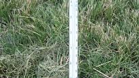 Půdní teploměr je velmi užitečná pomůcka zahradníka
