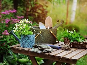 Zahrada včervenci