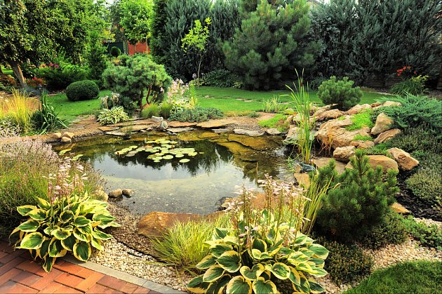 Jezírko jako dominanta zahrady