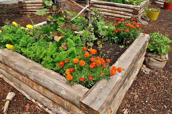 Vyvýšený záhon se hodí pro pěstování bylinek i květin.