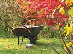 podzimní úklid zahrady