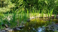 Pro správný výběr typu zahrady je dobré znát jednak lokalitu a geologické podmínky.