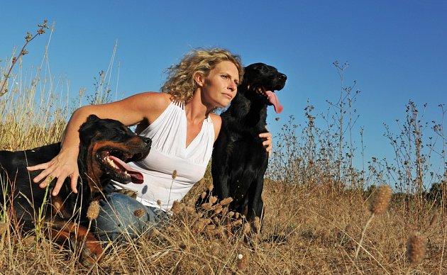 Beauceron je ochotný pes, který potřebuje přátelský výcvik.