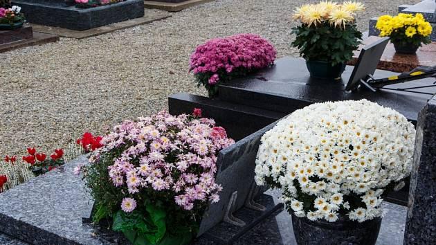 hrob chryzantémy