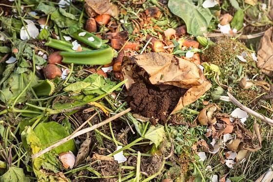 Kávovou sedlinu, lidově zvanou lógr, můžeme přidat do kompostu.
