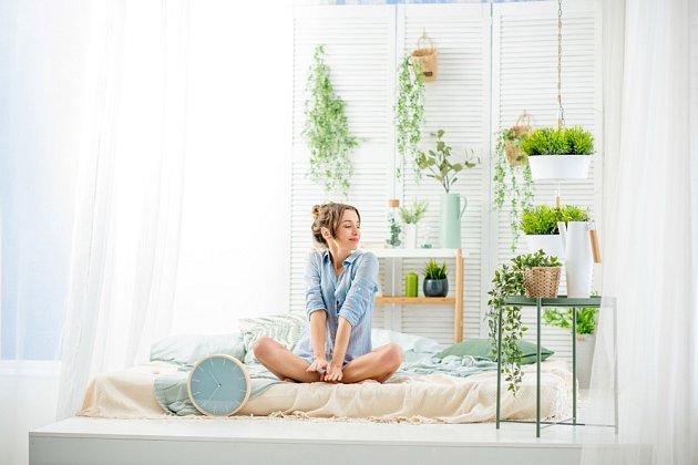 Svěží zelené rostliny udělají vaše ráno příjemnější