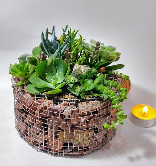 Miniaturní podoba gabionového květináče určeného jak do interiéru, tak do exteriéru.