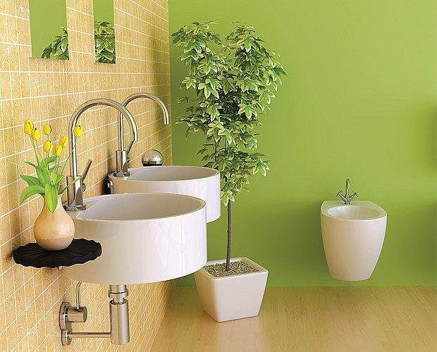Koupelna oživená rostlinami.