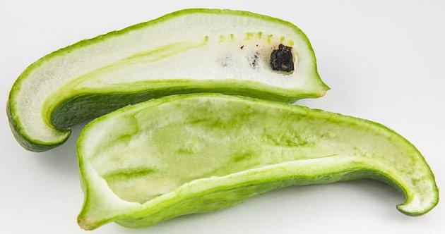 Zralá semena starších plodů je třeba odstranit