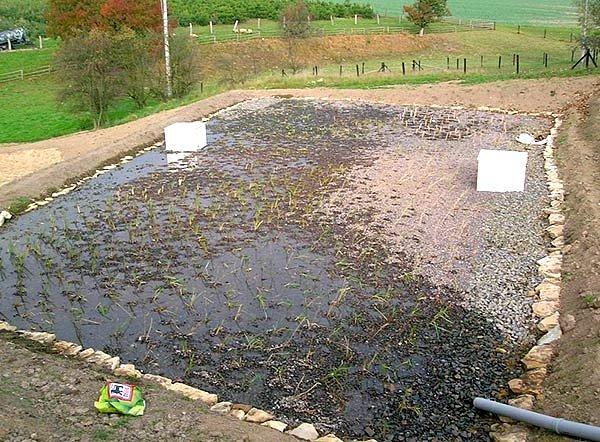 kořenová čistička odpadních vod