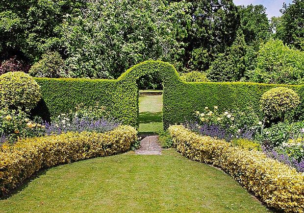 Živé ploty tvoří zahradu