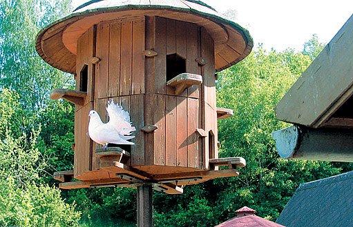 pravý selský holubník