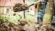 Provzdušněnému trávníku prospěje hnojivo s obsahem draslíku, který zvyšuje obranyschopnost rostlin proti mrazu a tím je chrání před napadením houbovými chorobami.