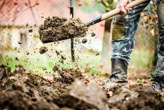 Provzdušněný trávník přivítá dávku hnojiva, které mu poskytne živiny na celou zimu, obzvlášť potřebný je draslík.