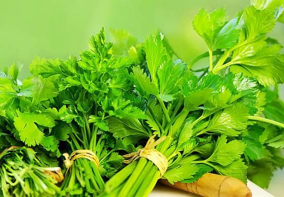 listový celer