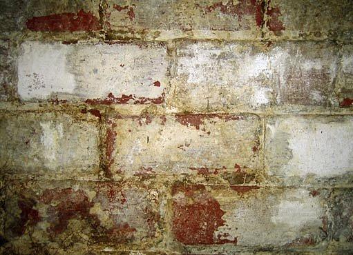 Vlhká zeď