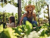 Vaše zahrada potřebuje správnou péči i během července.