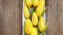 Žluté tulipány jako ozdoba svátečního stolu.