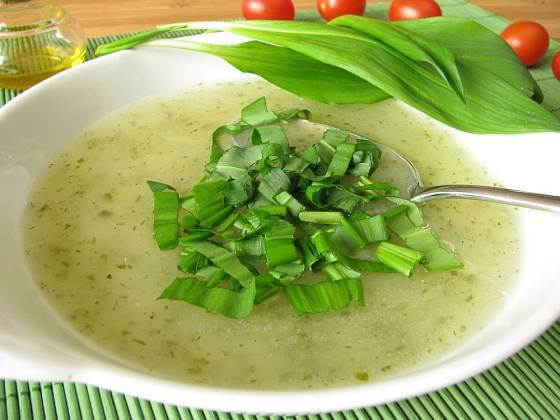Čerstvými listy medvědího česneku můžeme ochutit hotovou polévku.