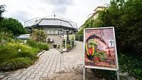 Hlavní výstavní skleník v Botanické zahradě PřF UK (Na Slupi).