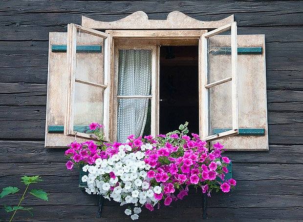 okna v roubence