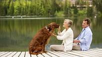 Svého psa můžete vzít s sebou i na dovolenou.