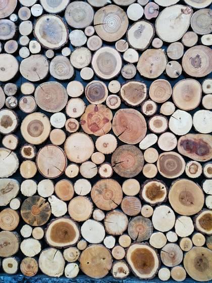 Dřevěné kolečka - zkrátka plátky dřeva lze využít při výrobě mnoha různých bytových dekorací.