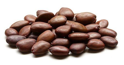 semena karobu