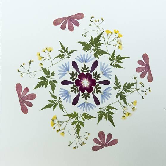 Obraz z vylisovaných květin