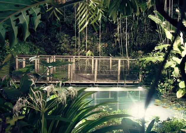 Noční provázení ve skleníku Fata Morgana má jedinečnou atmosféru