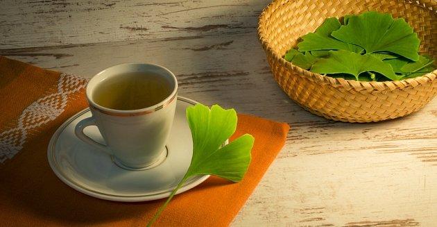 Nálev či odvar můžeme připravit z čerstvých i sušených listů jinanu