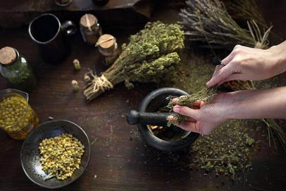 S léčivými bylinami je třeba umět zacházet