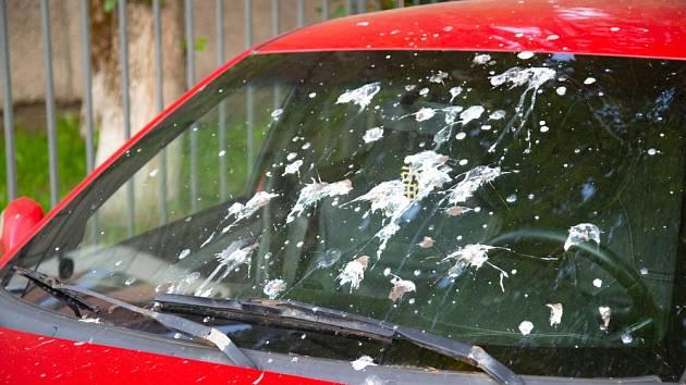 Čelní sklo auta snadno umyjeme hadříkem namočeným v obyčejném octu.