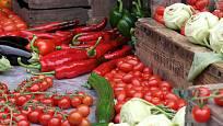 Ve skleníku lze pěstovat různé druhy zeleniny