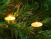 Vánoční světla mají velké kouzlo.