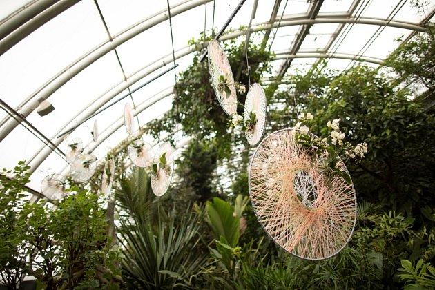 Aranžmá výstavy se ujala floristka Kára Franc Vavříková.