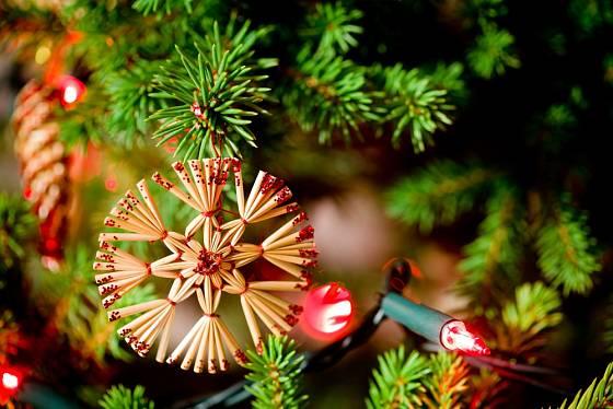 Vánoční ozdoba ze slámy má tvar hvězdy.
