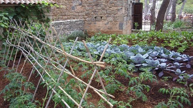 Vzorná zeleninová zahrada v Dalmácii