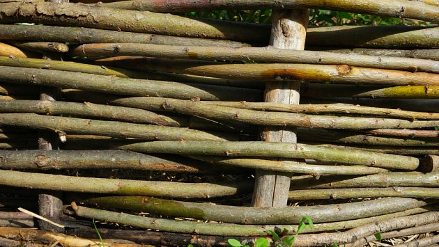Detail splétaného vrbového plotu.