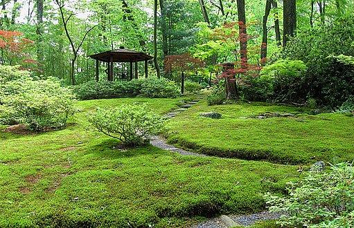 japonská mechová zahrada